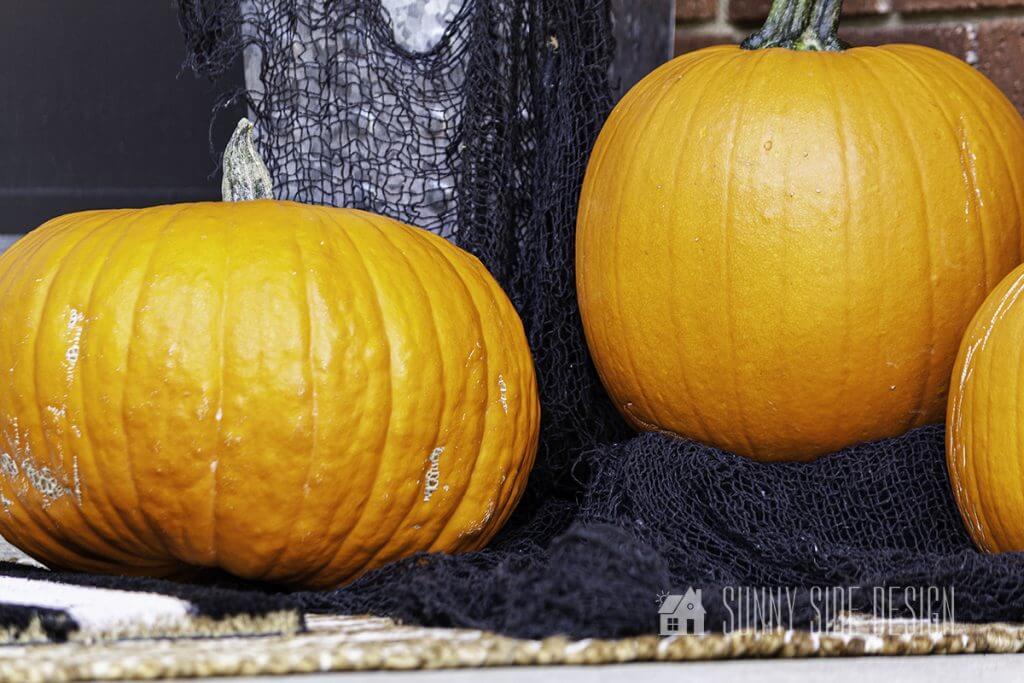Pumpkins for Halloween Decor