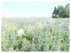 Lavender Fields Watercolor | Digital Download