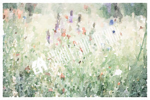 Field of Wild Flowers Watercolor | Printable Wall Art
