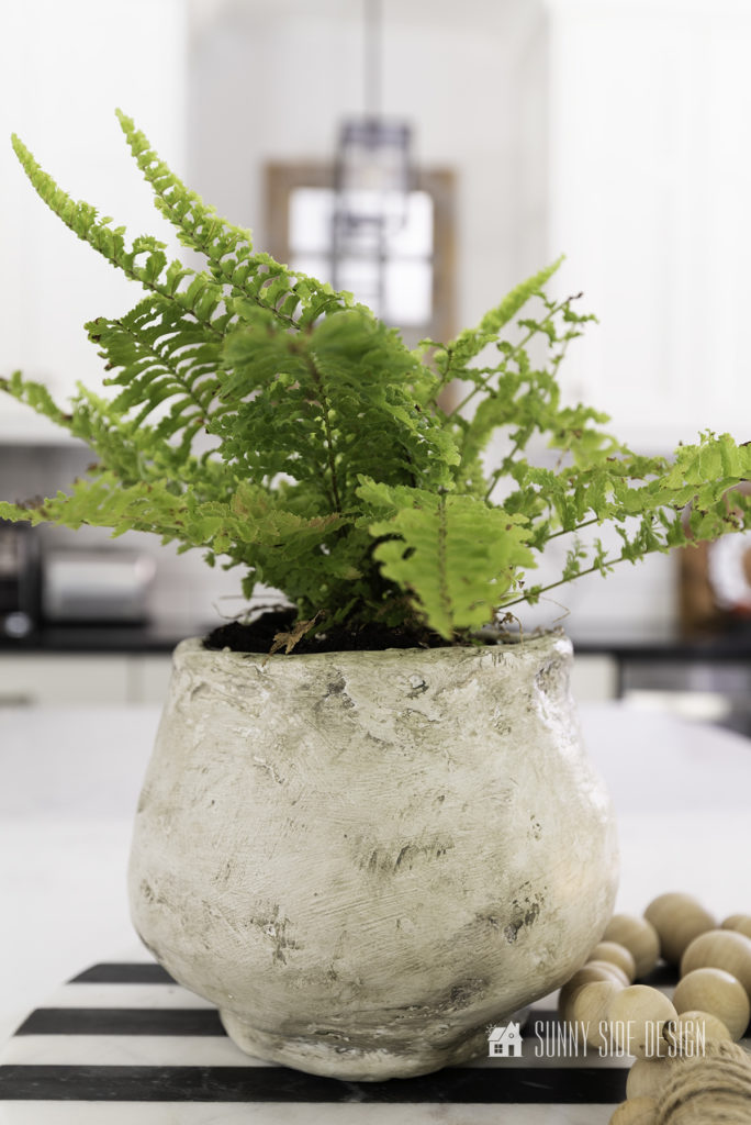 DIY textured pot with fern styled on a black and white tray with boho beads.ii