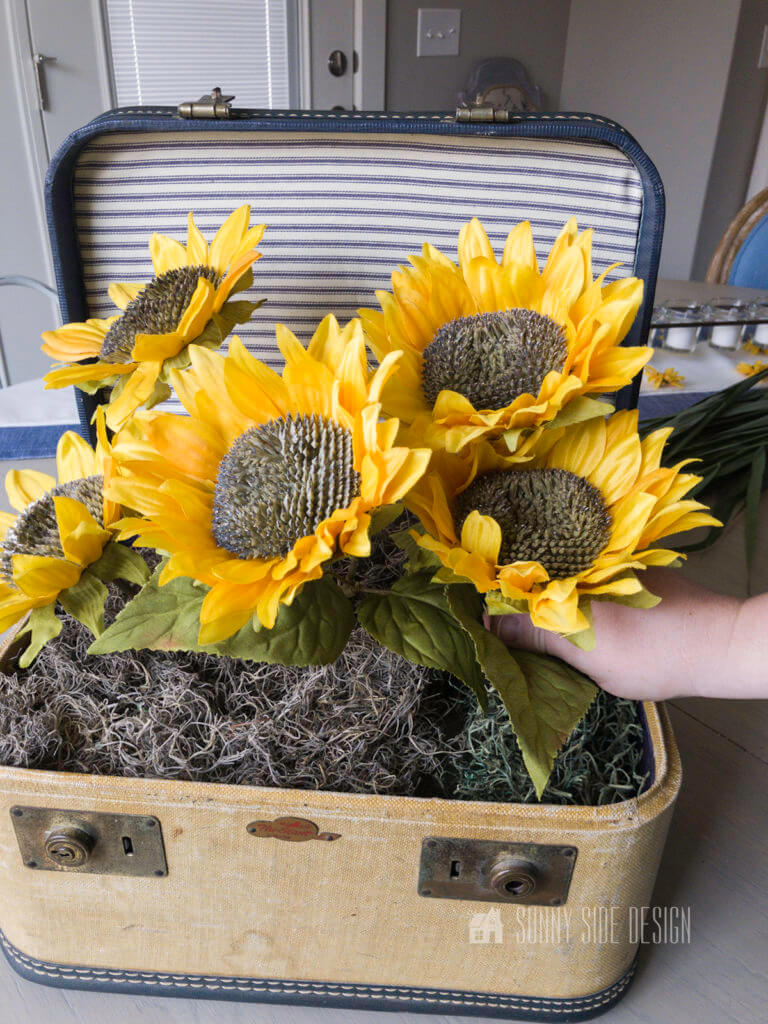 Large sunflowers are placed in a vintage cosmetic case.